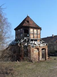 OSL-MallenchTaube-Schau-2011.jpg