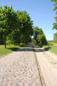 UM-Buelowssiege-Pflasterstrasse1-AM-2015.jpg